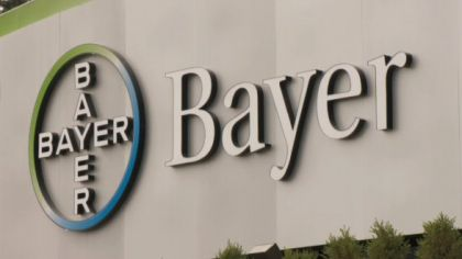 photo_Bayer