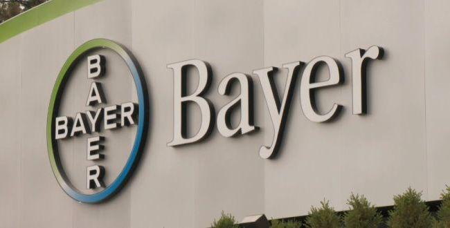 photo_Bayer