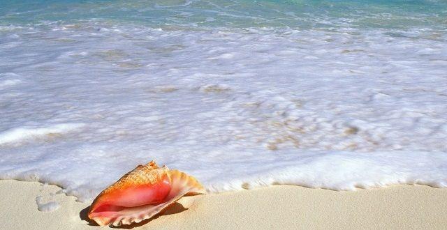 beachside-treasure-yucatan-peninsula-mexico2