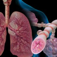 Xρόνια Aποφρακτική Πνευμονοπάθεια