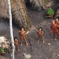 φυλή_αμαζόνιος
