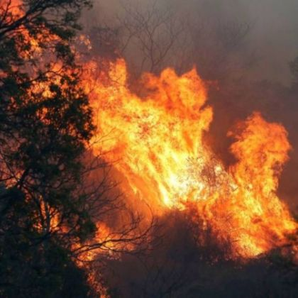 https___cdn.cnn.com_cnnnext_dam_assets_190908220501-02-australia-queensland-fire-restricted